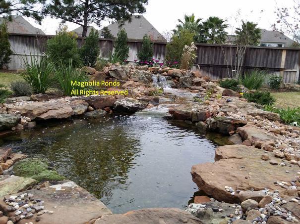 Water gardens spring water gardens conroe water gardens for Custom koi ponds