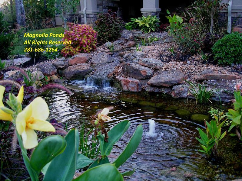 Water gardens spring water gardens conroe water gardens for Koi pool water gardens thornton