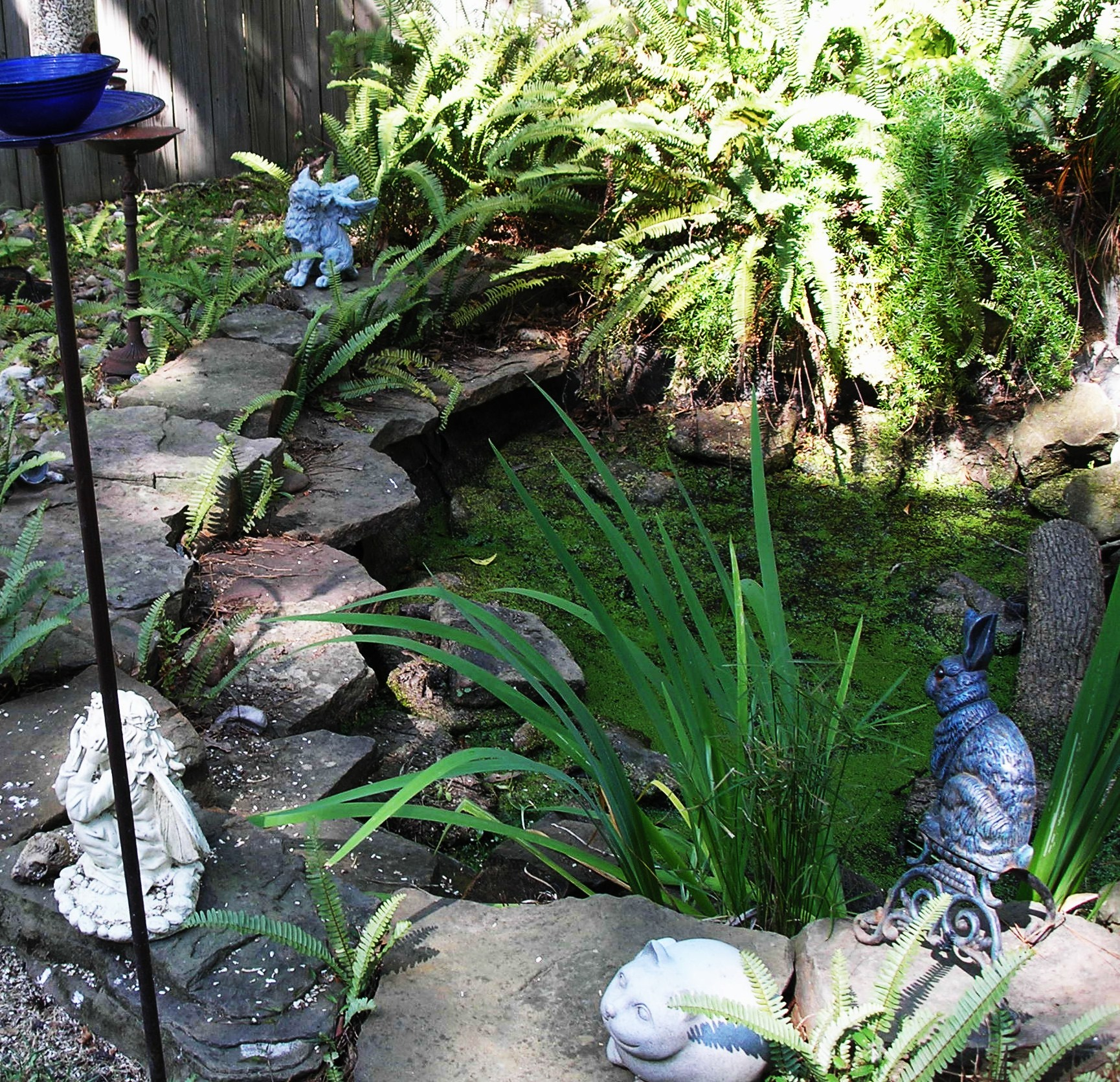 Pond cleanouts pond repair magnolia ponds and water for Koi pond the woodlands tx
